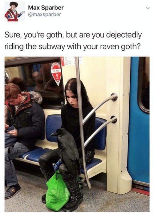 goth. .. >tfw no raven