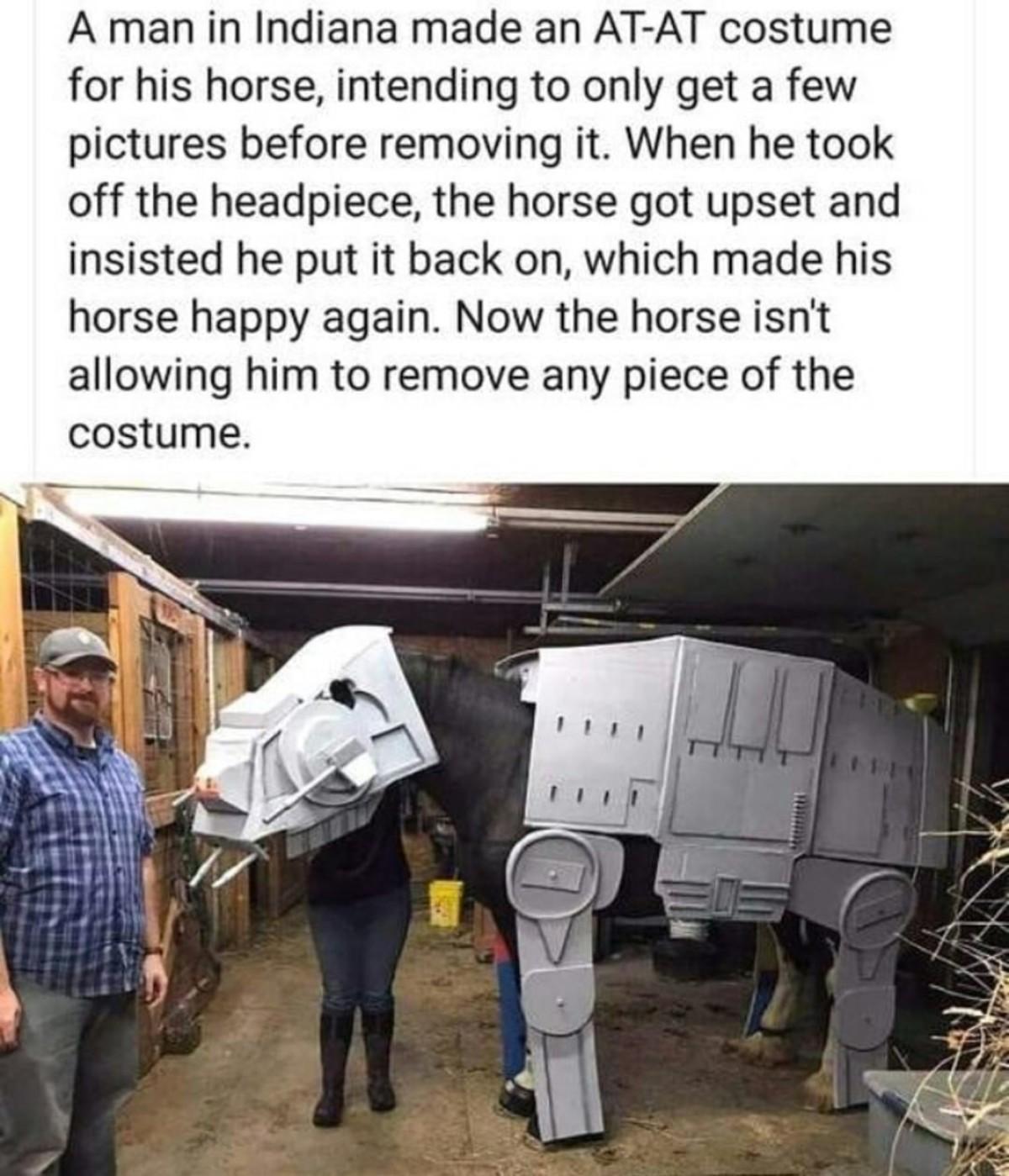 in a galexy far a wiey. .. He made him battle armour The horse demands war